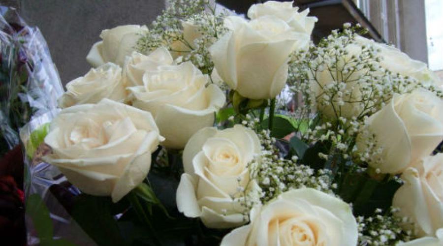 Сонник букет белых роз приснился. Сонник: розы, к чему снятся розы, розы во сне — полное толкование снов
