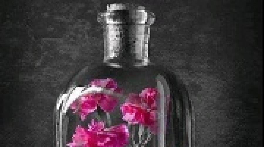 К чему снится бутылка: стеклянная или пластиковая? Основные толкования, к чему снится пустая бутылка из под вина. Разбитая бутылка толкование сонника